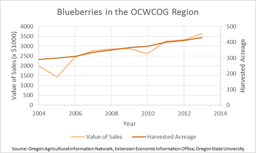 Blueberries in the Region